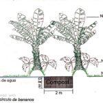 67-sostenibilidad-ambiental.jpg